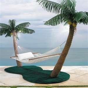 Palm Tree Hammock