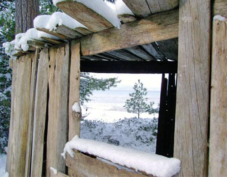 driftwood_cabin