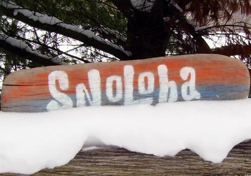 Snoloha Driftwood